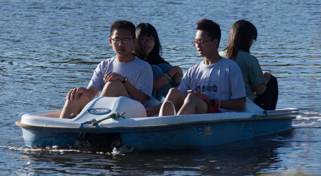 Chinese-Paddle